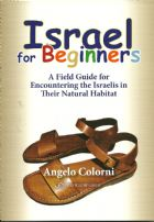 Israel for Beginners